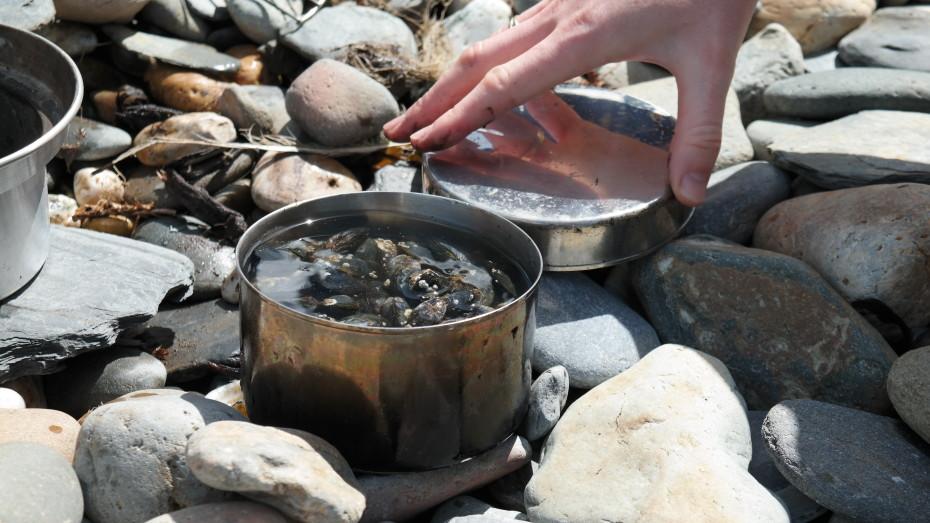 Mosselen gekookt aan het strand.