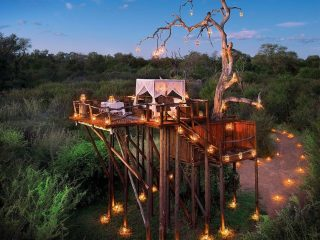 Lion Sands Reserve in South Africa