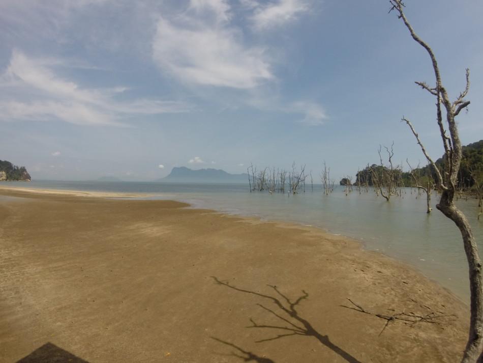 Bako National Park in Borneo!