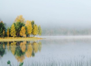 Fietsen in het mooie Zweden