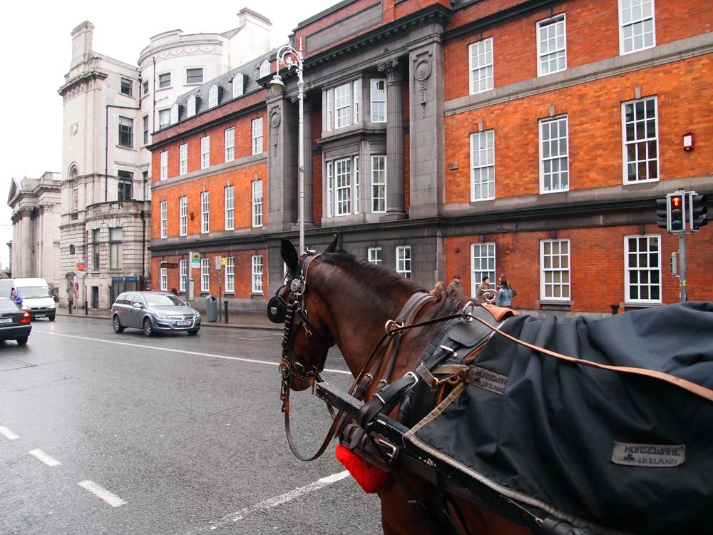 Er is qua vervoer in Dublin voor ieder wat wils!