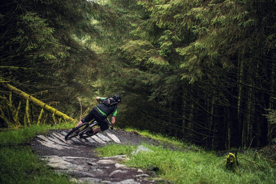 Davagh Forest (foto: Nicolas Baisin)