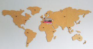 Review: Corkboard map