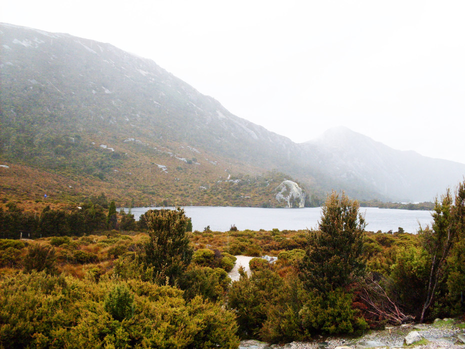 Wandeling bij Cradle Mountain op Tasmanië
