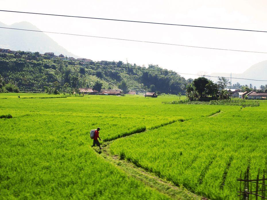 Ontdek het bijzondere Indonesië!