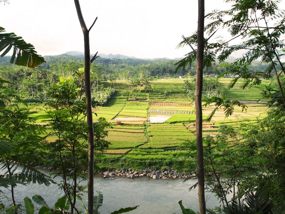 Prachtige landschappen op Java!