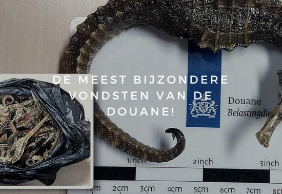 De meest bijzondere vondsten van de Douane!