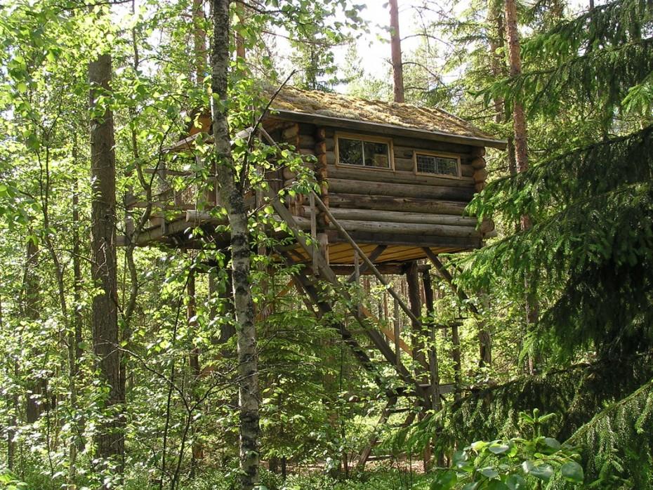 Onze boomhut in Zweden!