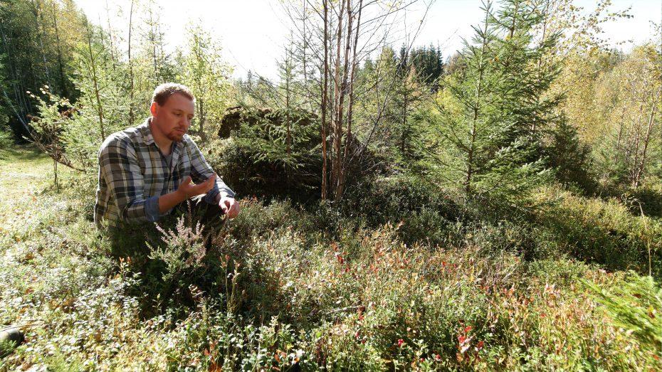 De omgeving waar je verblijft biedt een hoop vruchten. Dennis laat ons zien wat de natuur biedt.