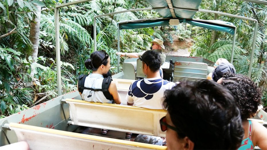 rainforestation-nature-park-army-duck