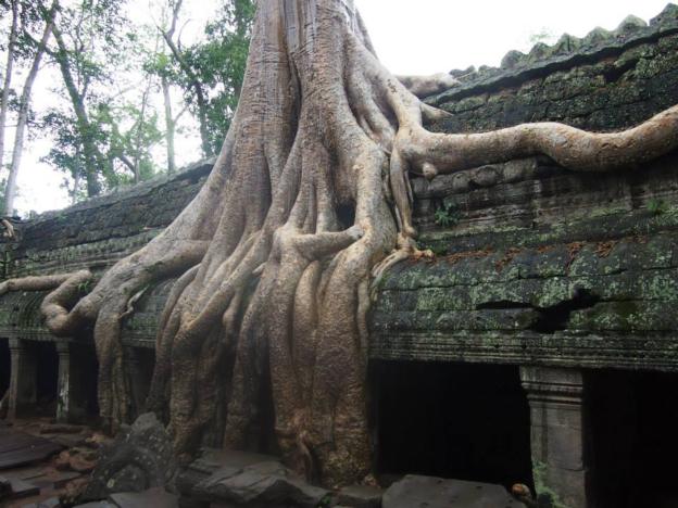 Siem Reap-cambodja2