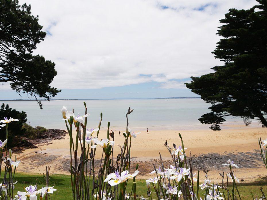 Het prachtige Philip Island, in de buurt van Melbourne!