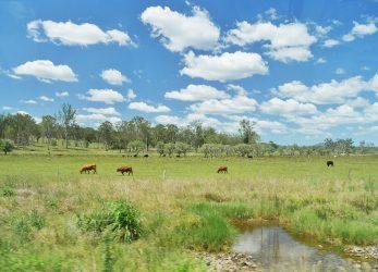 Het is soms net een schilderij, die Australische landschappen!