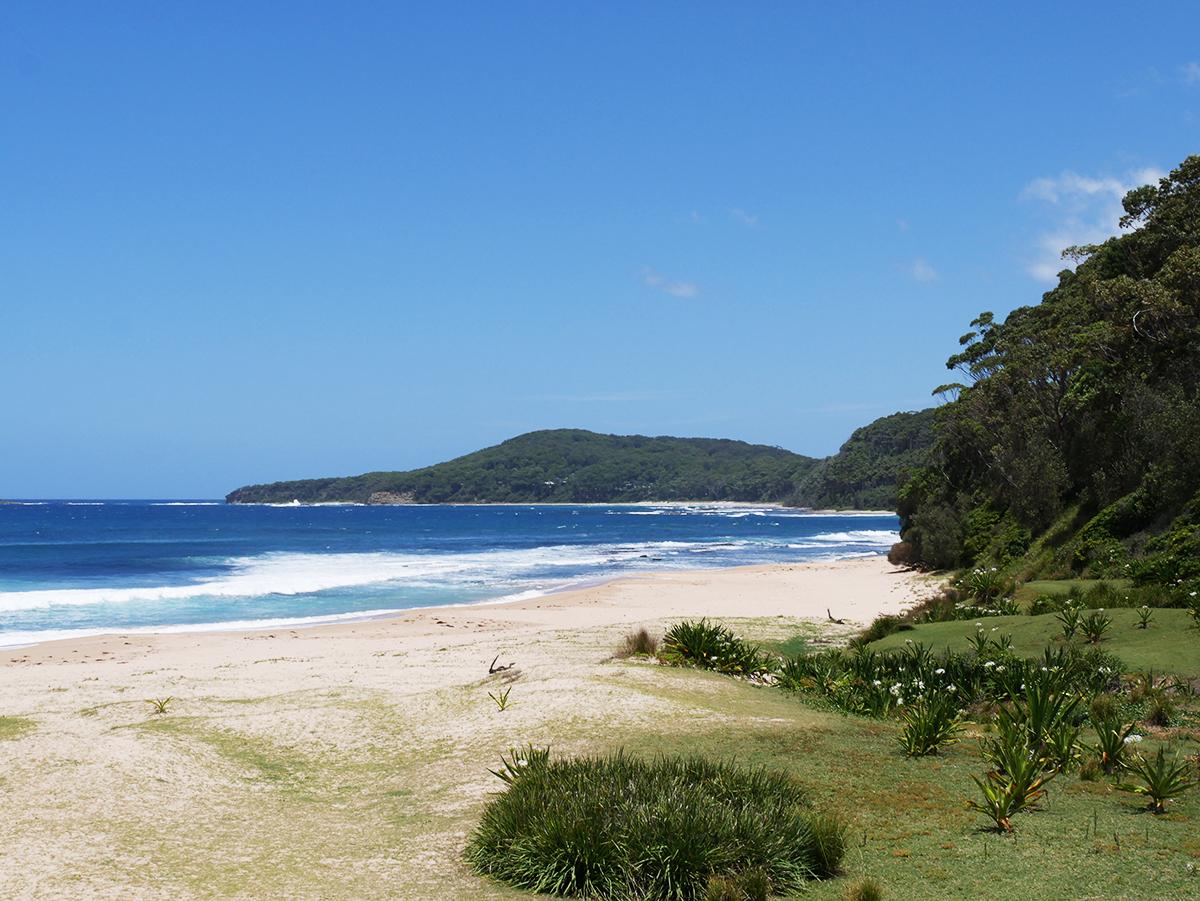 Het paradijselijke Pebbly Beach in Australië!