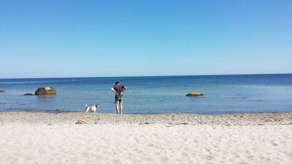 Een langgerekt hondenstrand: strand Hohwacht!
