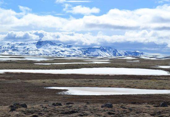De leukste food spots van Reykjavik in IJsland!