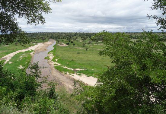 Een onvergetelijke reis door Tanzania en Kenia!