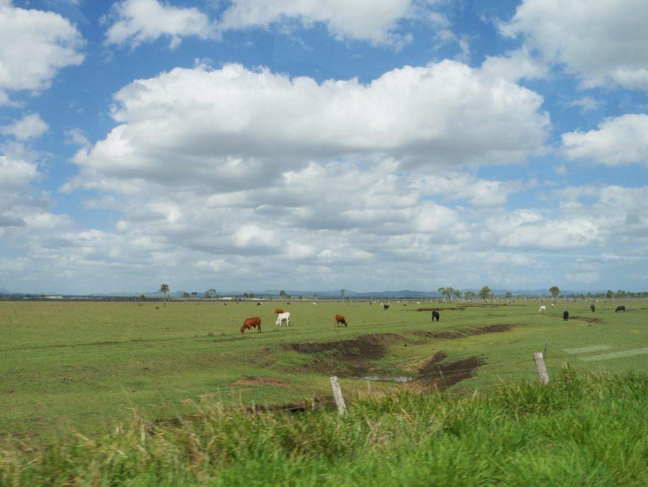 Prachtige landschappen tijdens onze roadtrip door Australië