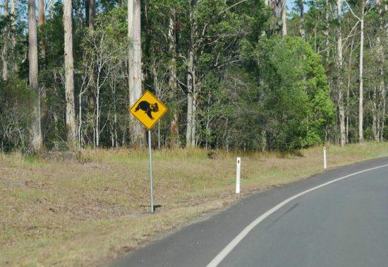 Roadtrip Australië deel 2: Van Airlie Beach naar Wollongong