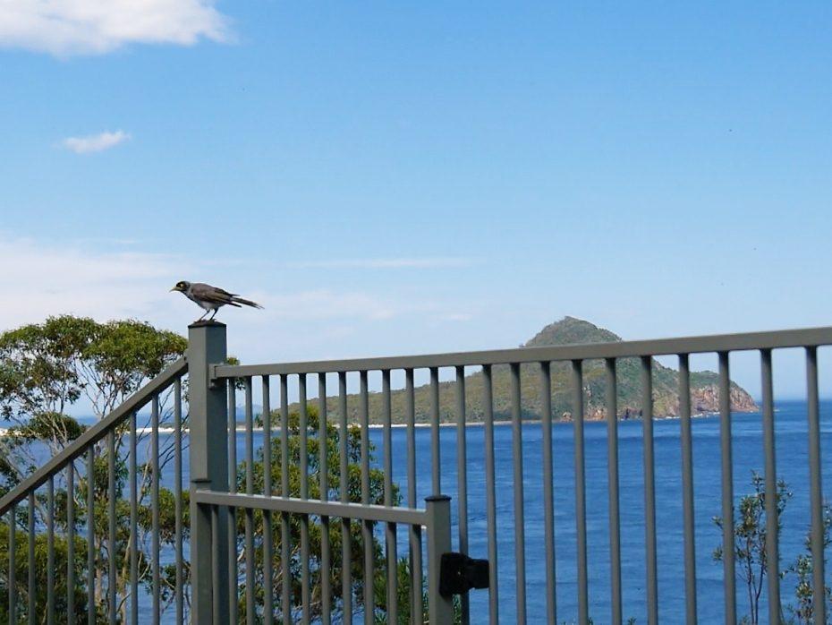 Schitterend uitzicht in Nelson Bay