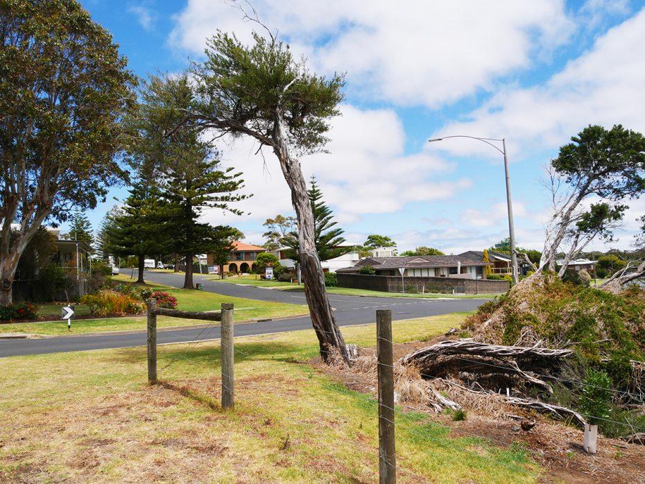 Wat een prachtige natuur op Phillip Island