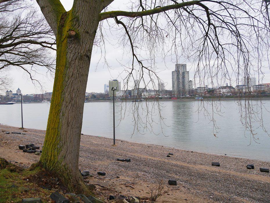 Vanuit het Rheinpark, kijkend op de Rijn