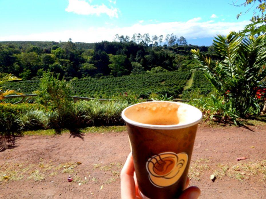 Koffie drinken op Costa Rica