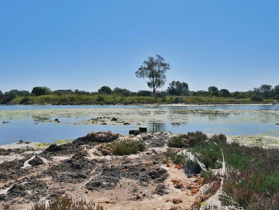 Natuurgebied in de buurt van Olbia op Sardinië