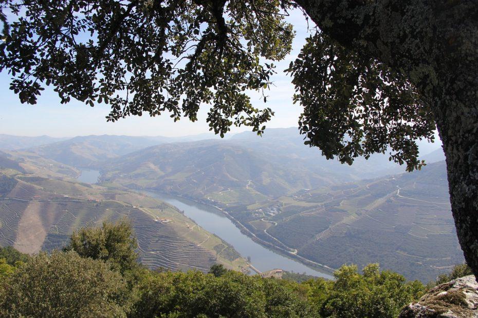 Breng een bezoek aan de Douro-vallei