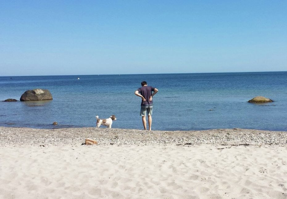 Op reis met een huisdier