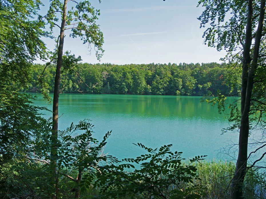 Mooi blauw water van de Liepnitzsee