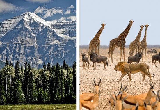 Canada of Namibië - Wat zou jij kiezen?