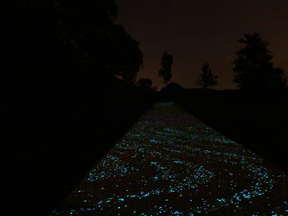 Van Gogh Fietspad: wandelen over de sterrennacht