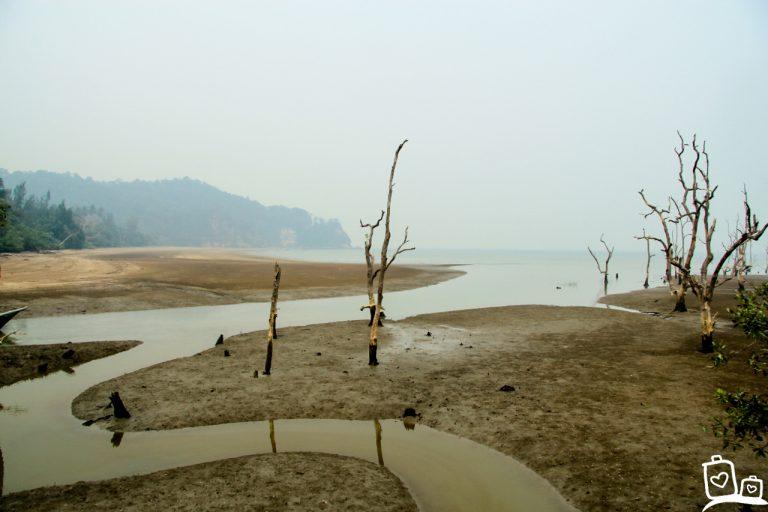 Kuching: een mooi startpunt van een rondreis door Maleisisch Borneo!