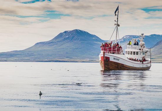 Veiligste landen - IJsland is het veiligste land om naar toe te gaan in 2020