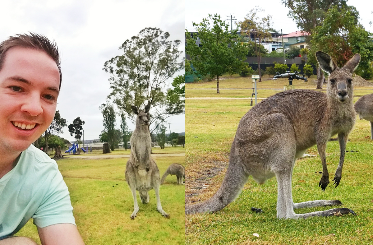 Nog even een kangoeroe selfie!