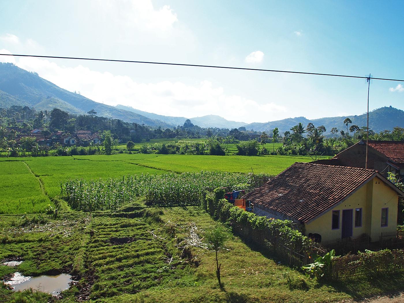Prachtige groene landschappen
