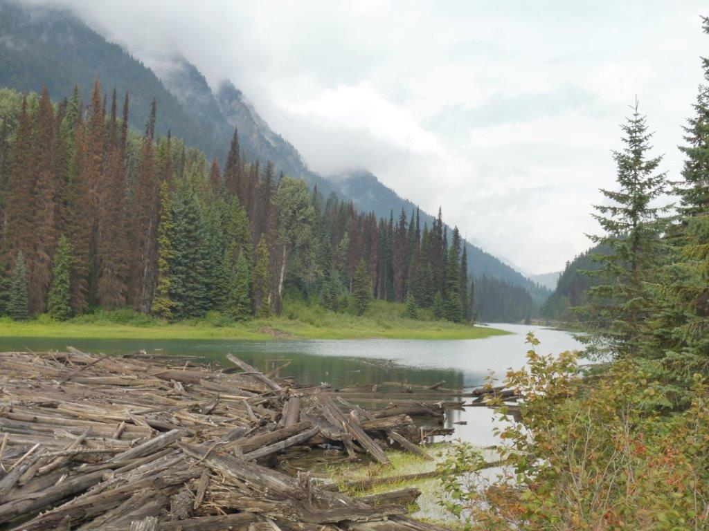 Prachtige landschappen onderweg naar Whistler