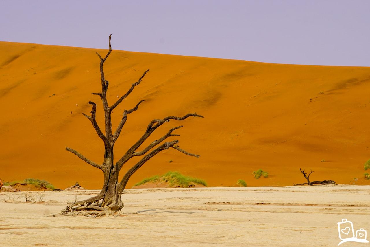 In Namibië vind je verschillende soorten natuur