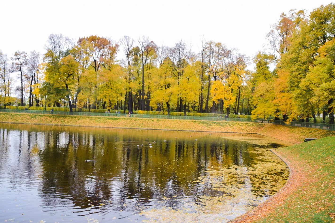 Stadspark Summer garden