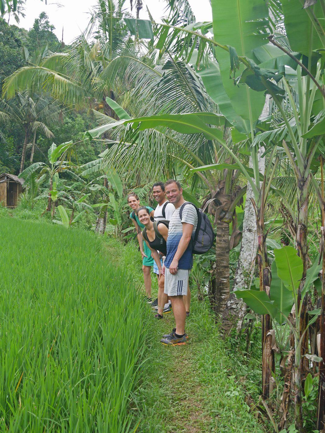 Tussen de rijstvelden