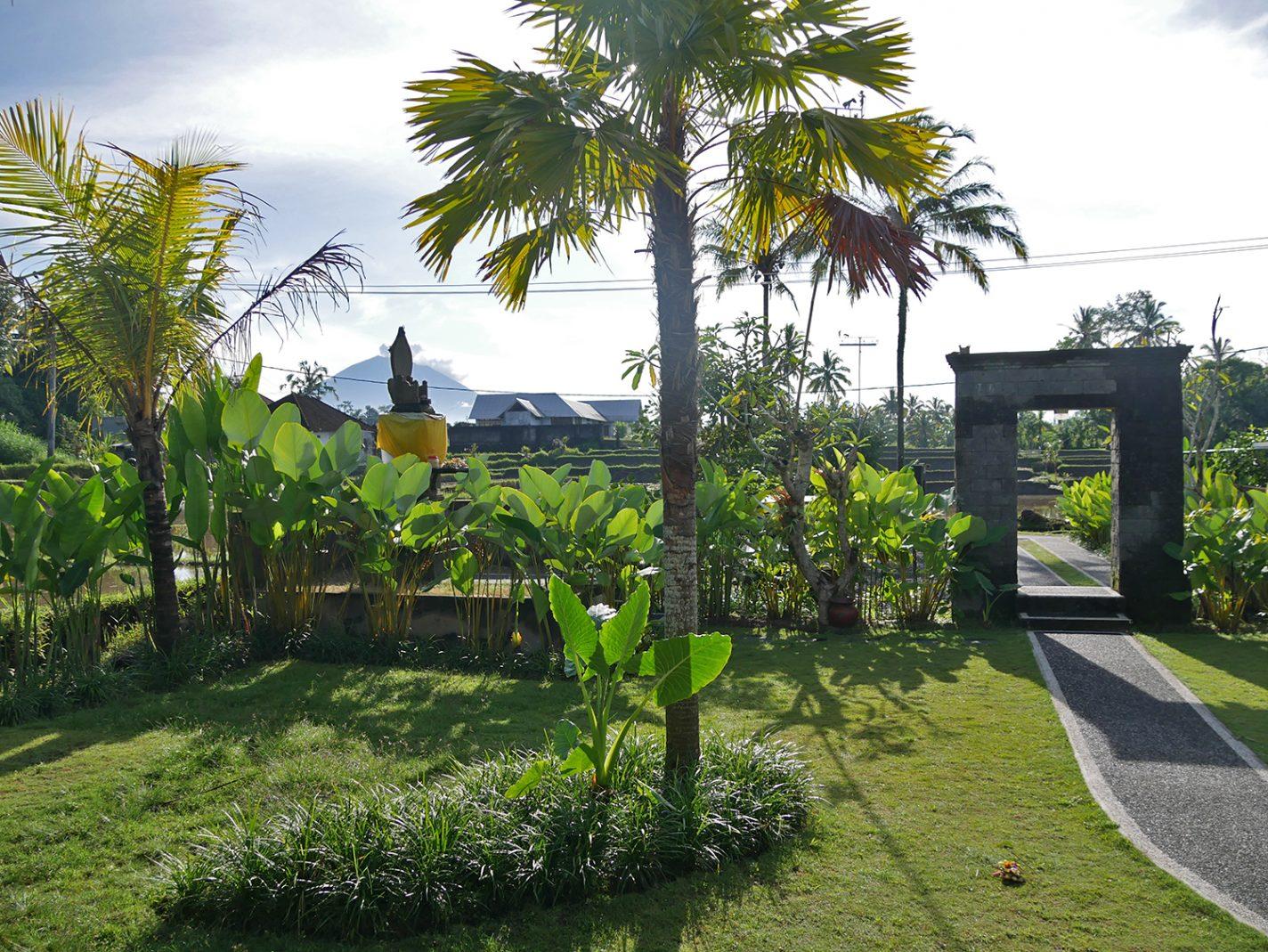 Slapen tussen de rijstvelden in Ubud op Bali