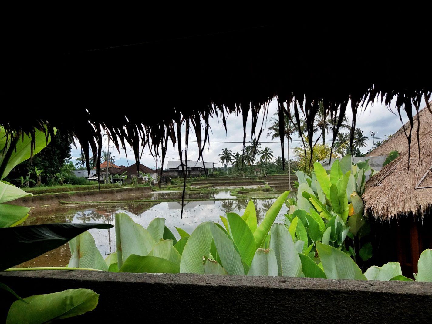 Tussen de rijstvelden overnachten, een mooie ervaring!