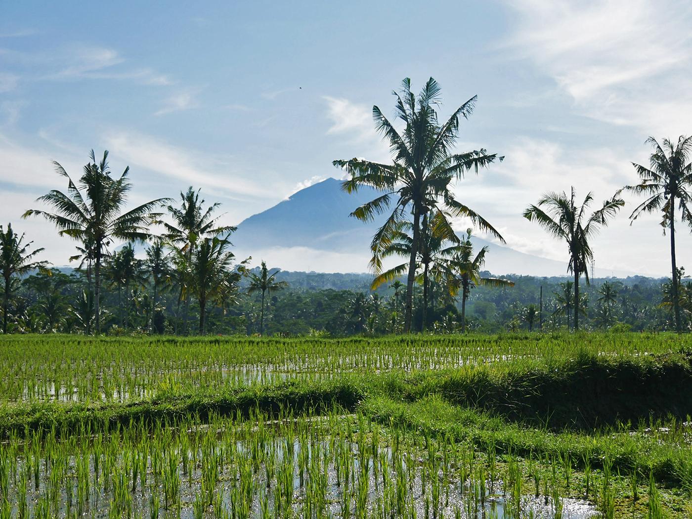 De Agung - Vulkaan Bali