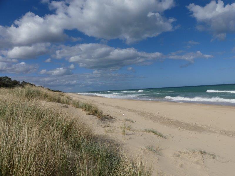 Woodsite Beach