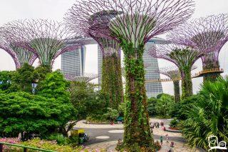 4 dagen Singapore: Wat te doen?