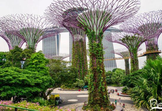 Wat te doen in Singapore!