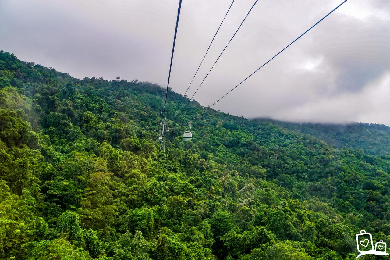 Met de skyrail over het regenwoud - Wat te doen op een regenachtige dag in Cairns?