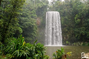 Wat te doen op een regenachtige dag in Cairns?