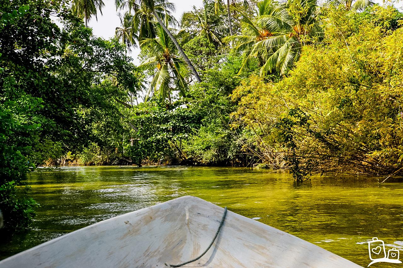Boottocht op het Muthurajawela Marsh Moeras